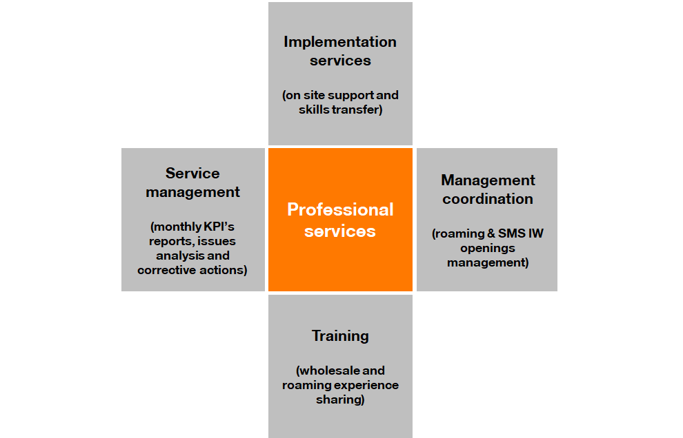 professional-services2